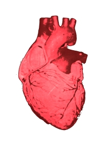 heart-bio1bpsd